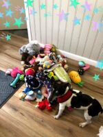 Toy donation from anonymous donor_4-25-2021