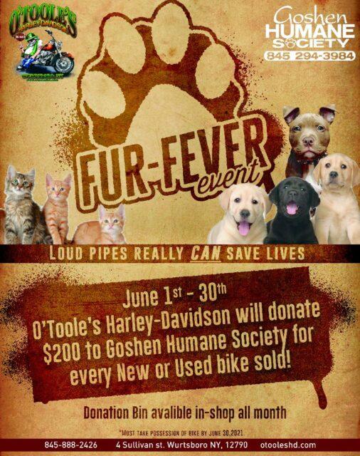 O'Tooles Harley Davidson Fundraising Flyer